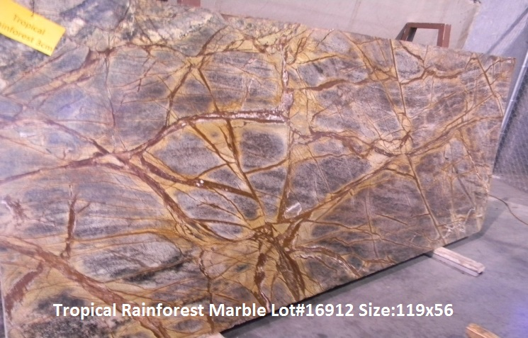 Tropical Rain Forest Marble